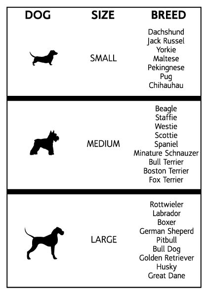 Pitbull Size Chart Goldenacresdogs